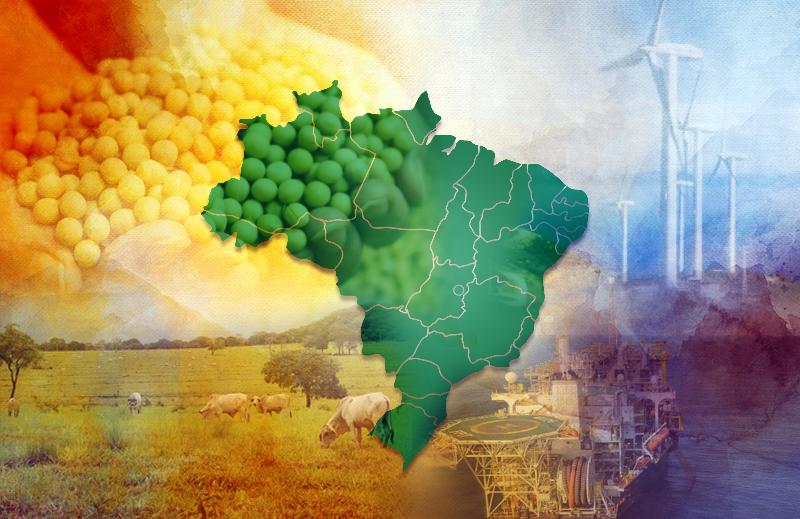 Economia brasileira: desenvolvimento histórico e perspectivas