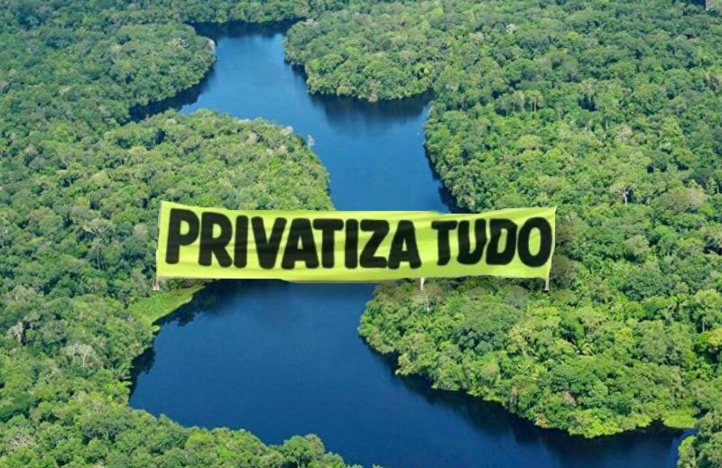 Para preservar a Amazônia, é preciso privatizá-la