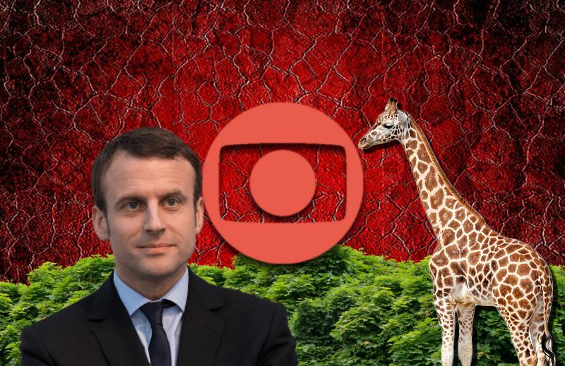 A Globo não é de esquerda, a Amazônia tem girafas e Macron salvará as árvores
