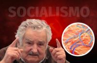 Por que os socialistas agem como bactérias parasitárias?
