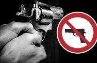 Desarmamento: genocídio puro e simples