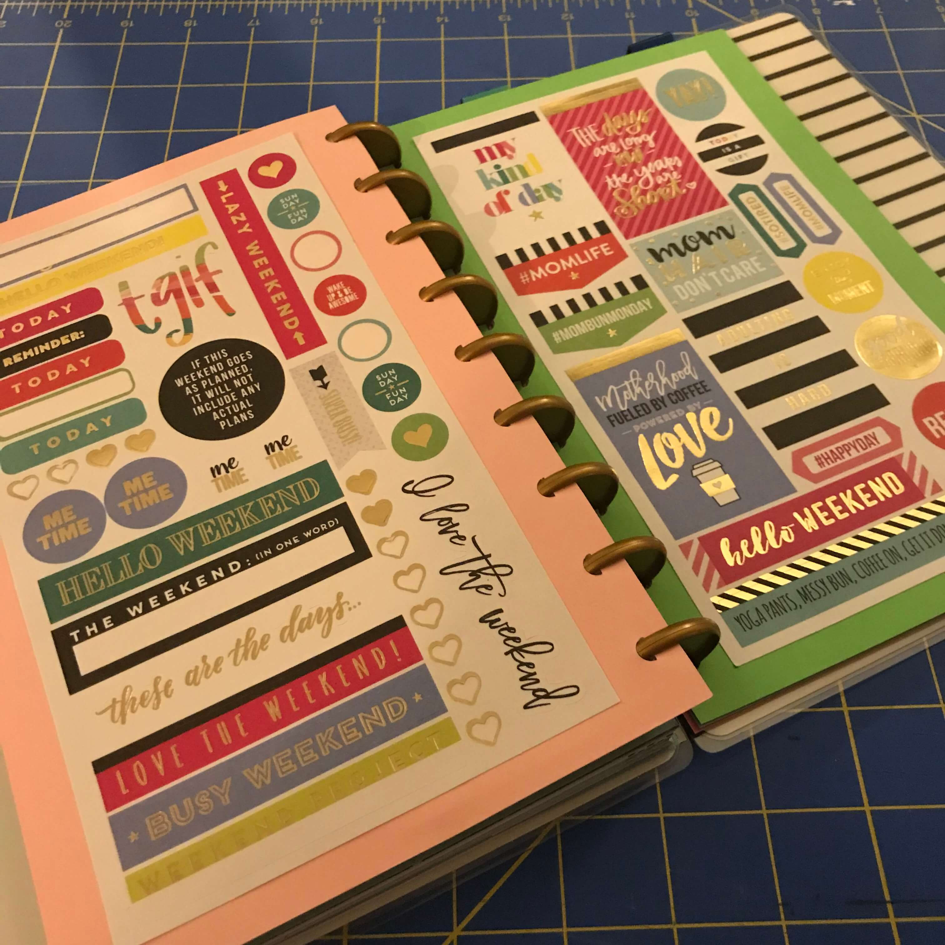 Card stock with sheets of stickers punched into happy planner