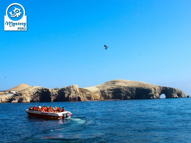 Boat excursion to the Ballestas Islands