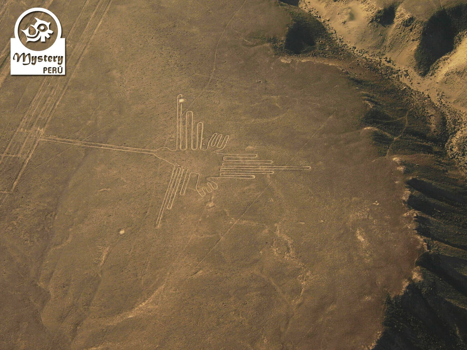 Nazca Lines Flight and Lagoon Moron Full Day Tour 6