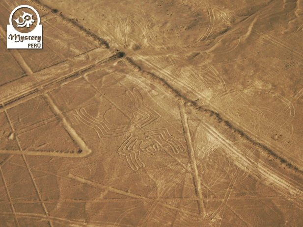 The Nazca Lines + Cantayo 6