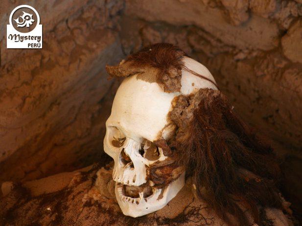 The Nazca Lines + Chauchilla + Cantayo 7