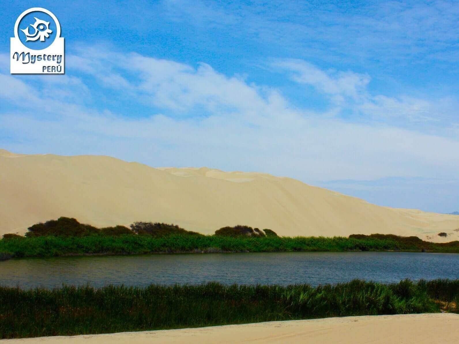 Tour a las Lineas de Nazca y La Laguna Moron 11