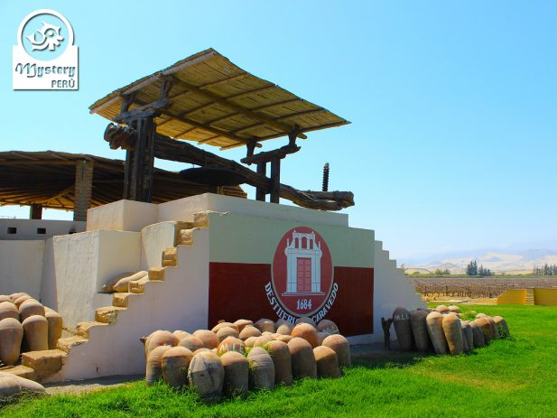Tour to The Vineyards of Pisco 5