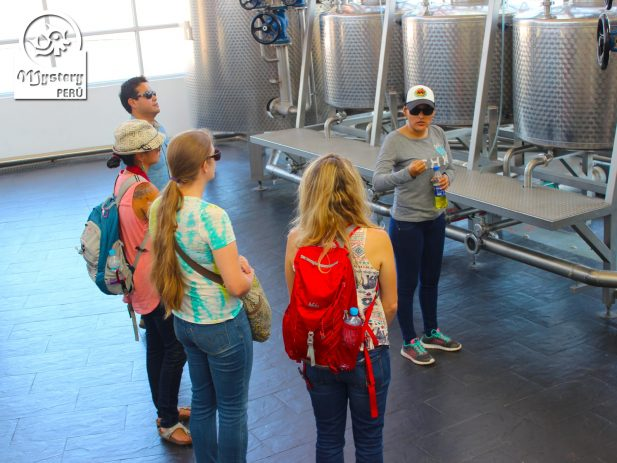 Tour to The Vineyards of Pisco 6