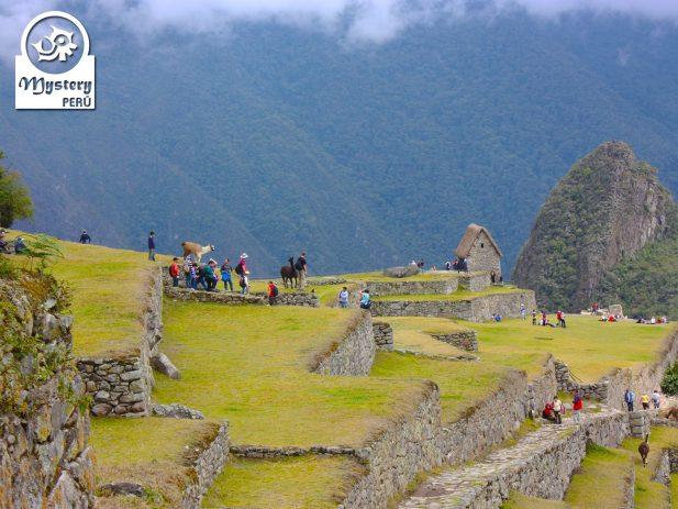 Caminata Corta al Santuaio de Machu Picchu 2 Dias 6