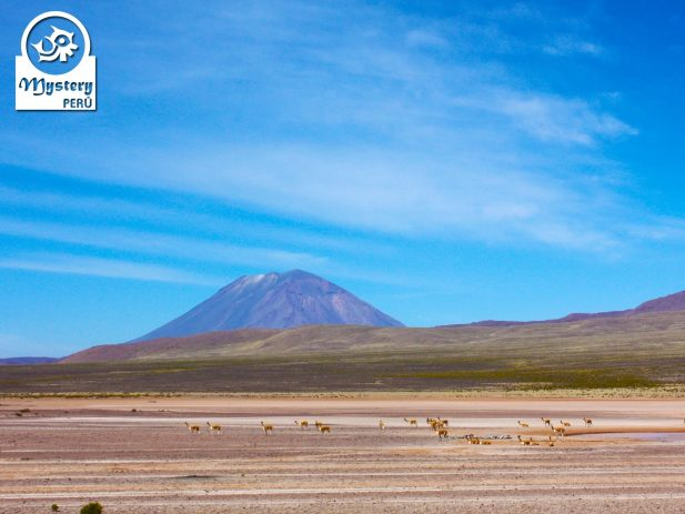 Private Trip to the Colca Canyon Departing from Puno 2 Days & ending in Arequipa 3