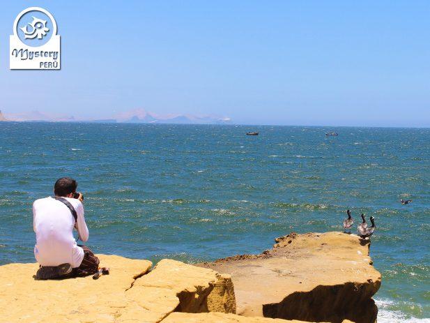 Excursão de 1 dia nas Ilhas Ballestas e Paracas desde Lima 8