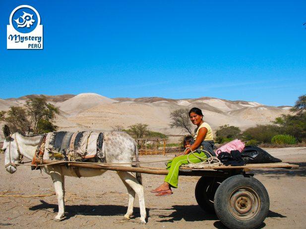Excursion en buggy al Desierto de Usaka 8