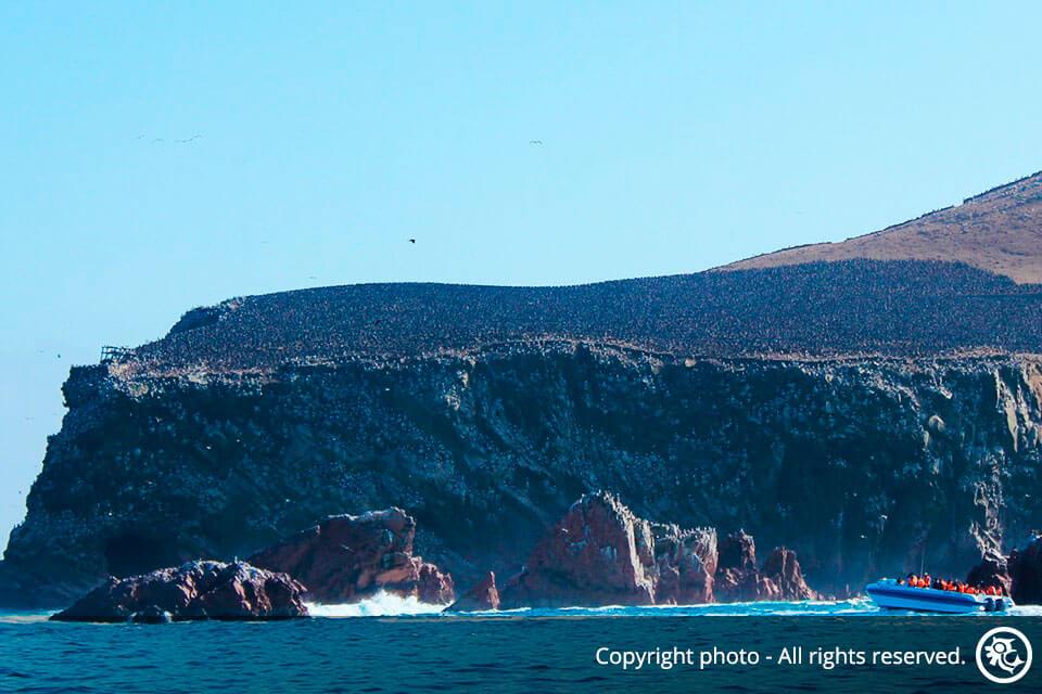 Islas Ballestas y Paracas con pernocte en el Hotel Paracas