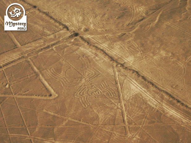 Lineas de Nazca + Ruinas de Cahuachi 6