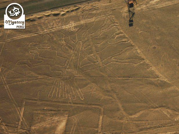 Lineas de Nazca desde Cusco & bus a Lima 2 Dias 7