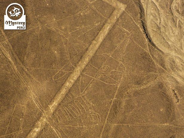 Lineas de Nazca desde el Aeropuerto de Lima 5