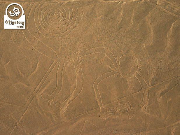 Lineas de Nazca desde el Aeropuerto de Lima 6