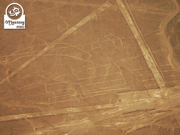 Lineas de Nazca desde el Aeropuerto de Lima 7
