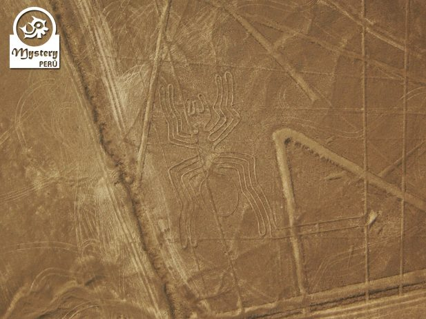Lineas de Nazca desde el Aeropuerto de Lima 9