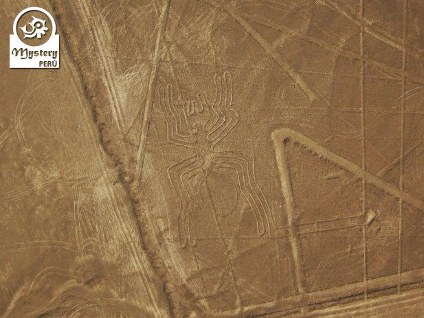 Linhas De Nazca Tudo Em 1 Dia Saindo de Lima 10