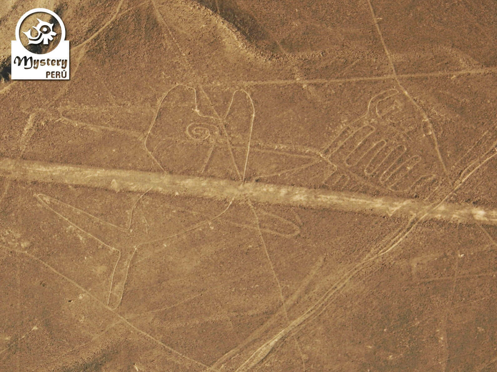 Nazca Lines Flight from the Ica Airport
