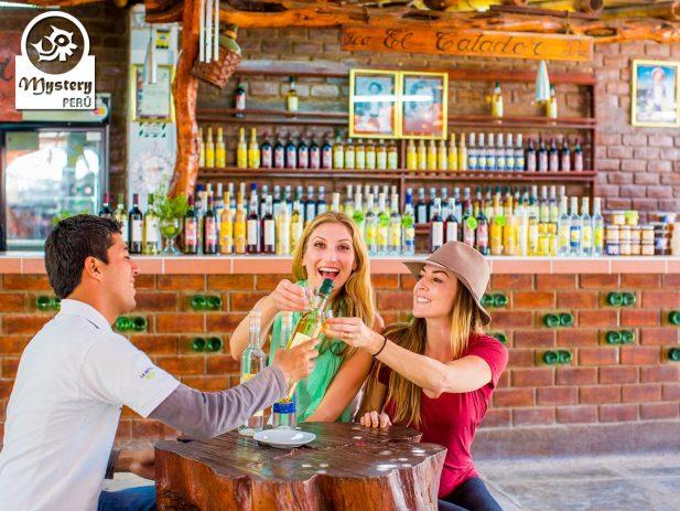Oasis Huacachina & Reserva de Paracas. Viaje en Bus 6