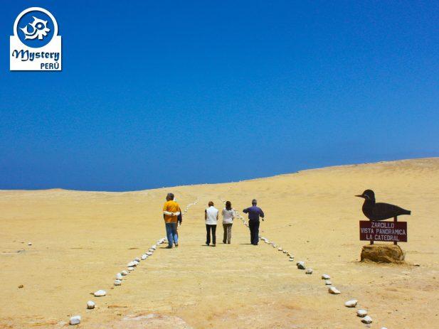 Reserva Natural de Paracas. Viaje Privado 3 Dias 11
