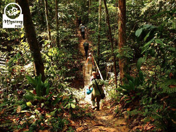 Reserva de Tambopata y Posada Amazonas 7