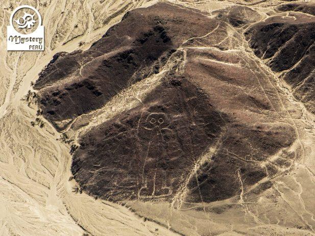 Vuelo a las Lineas de Nazca desde el Aeropuerto de Nazca 3