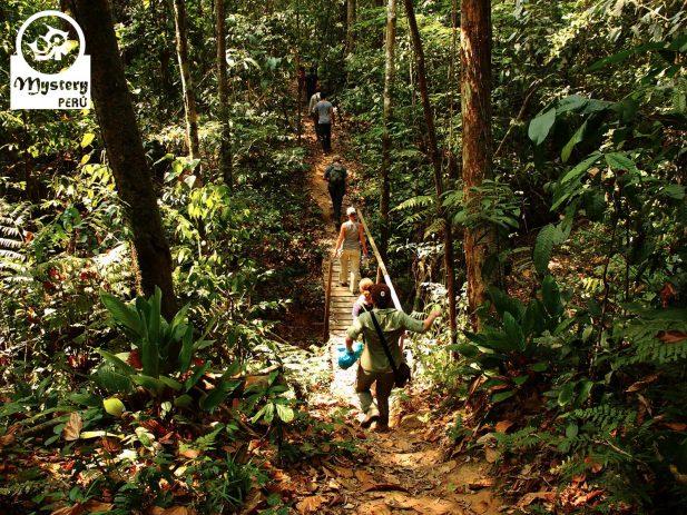 Refugio Amazonas Lodge & Tambopata Reserve Tours 8.