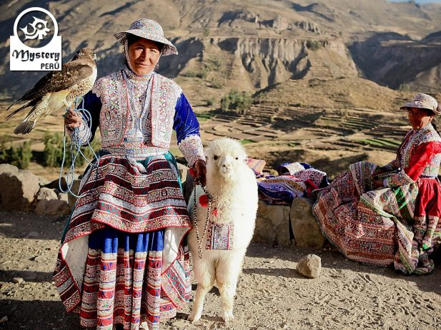 colca canyon excursion departing from puno & ending in arequipa 7
