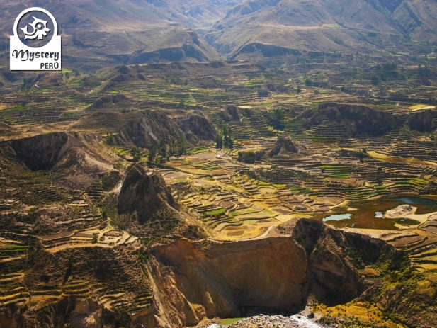 colca canyon excursion departing from puno & ending in arequipa 8