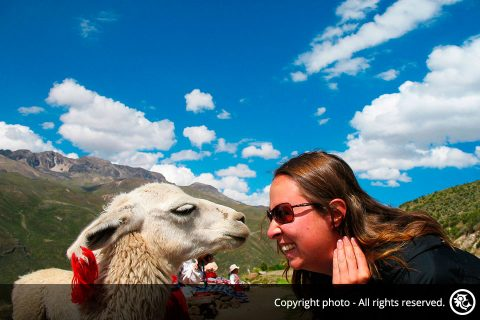 Colca Canyon Full Day Excursion