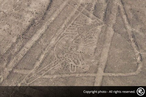 Flight Over the Nazca and Palpa Lines