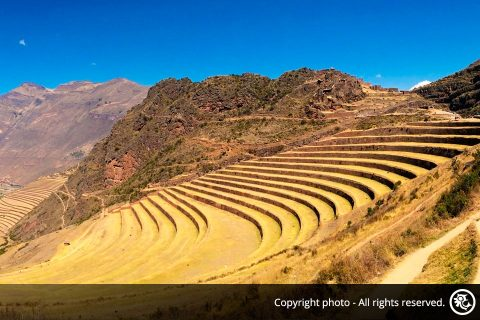 Tour to the Sacred Valley and Machu Picchu