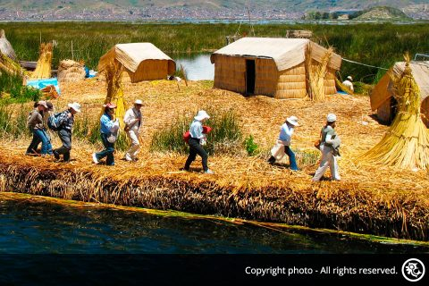 Lake Titicaca Homestay Tour from Cusco