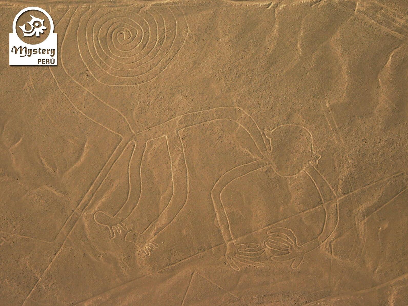 Excursão para as Linhas de Nazca de Lima