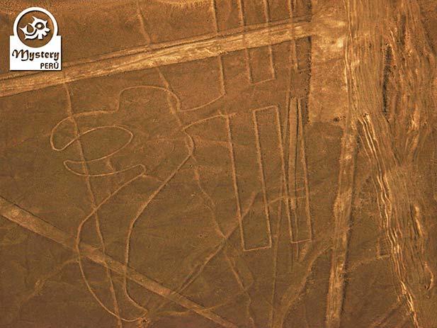 Visita às Linhas de Nazca de Cusco