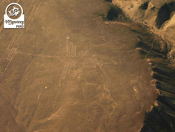 Nazca Lines Flight and trip to Cusco by bus