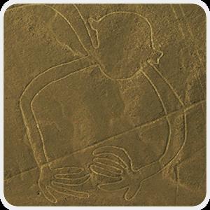 Mono Capuccino Nasca