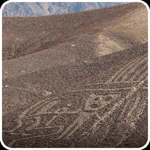 Geogligo de un humano en Palpa
