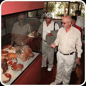 Guiado sobre Cahuachi por Giusepe Orefeci