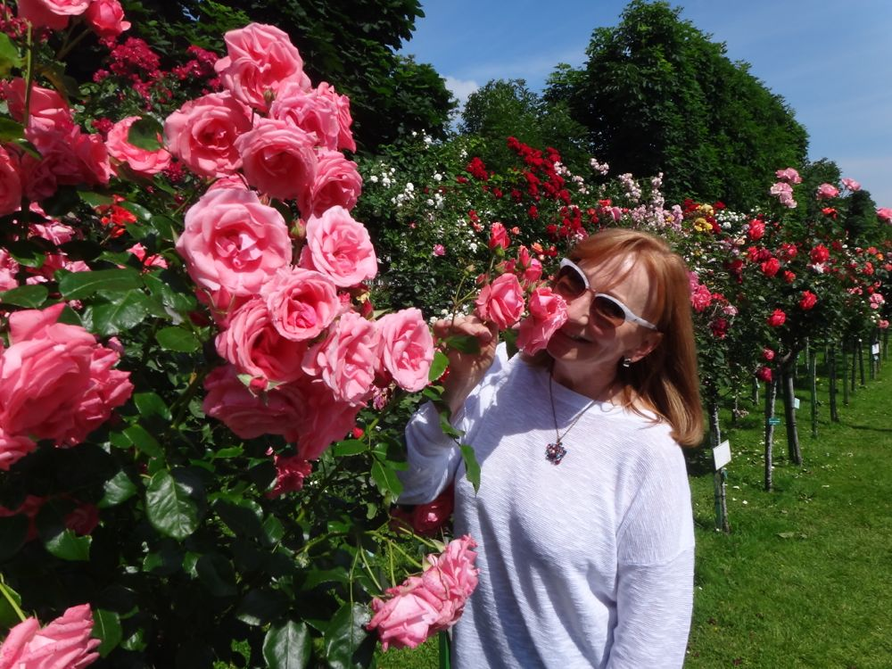 Lainch smelling roses