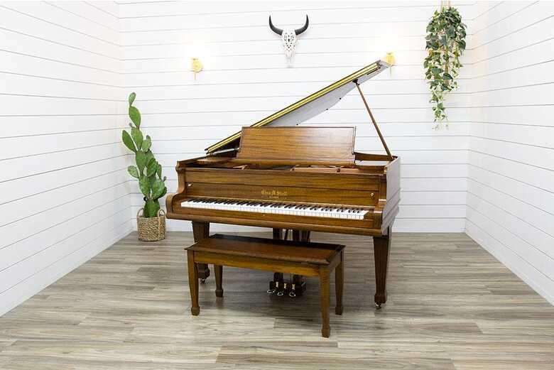 Chas M. Stieff Baby Grand Piano