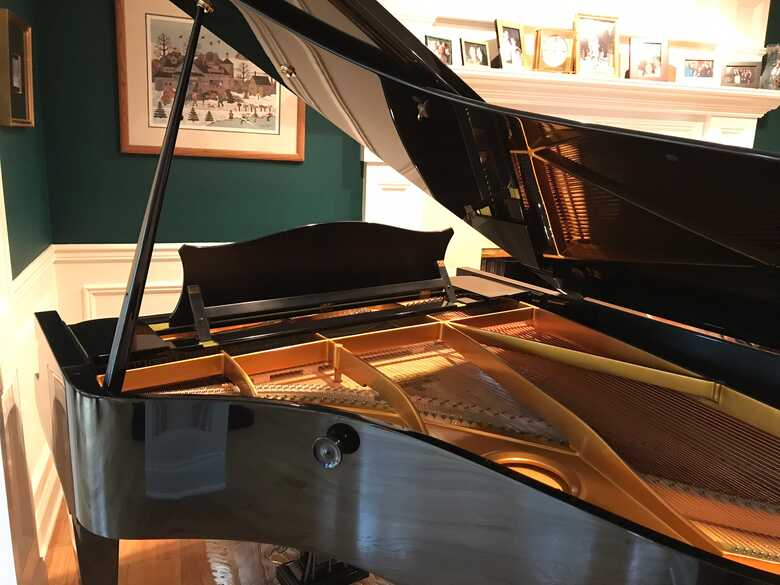 Bechstein masterful sound and condition