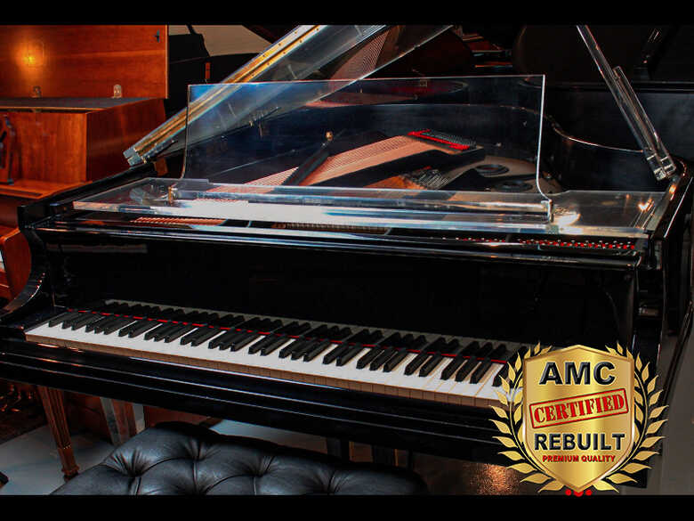 Baldwin R Grand Piano - ACRYLIC ART CASE- FREE Shipping!