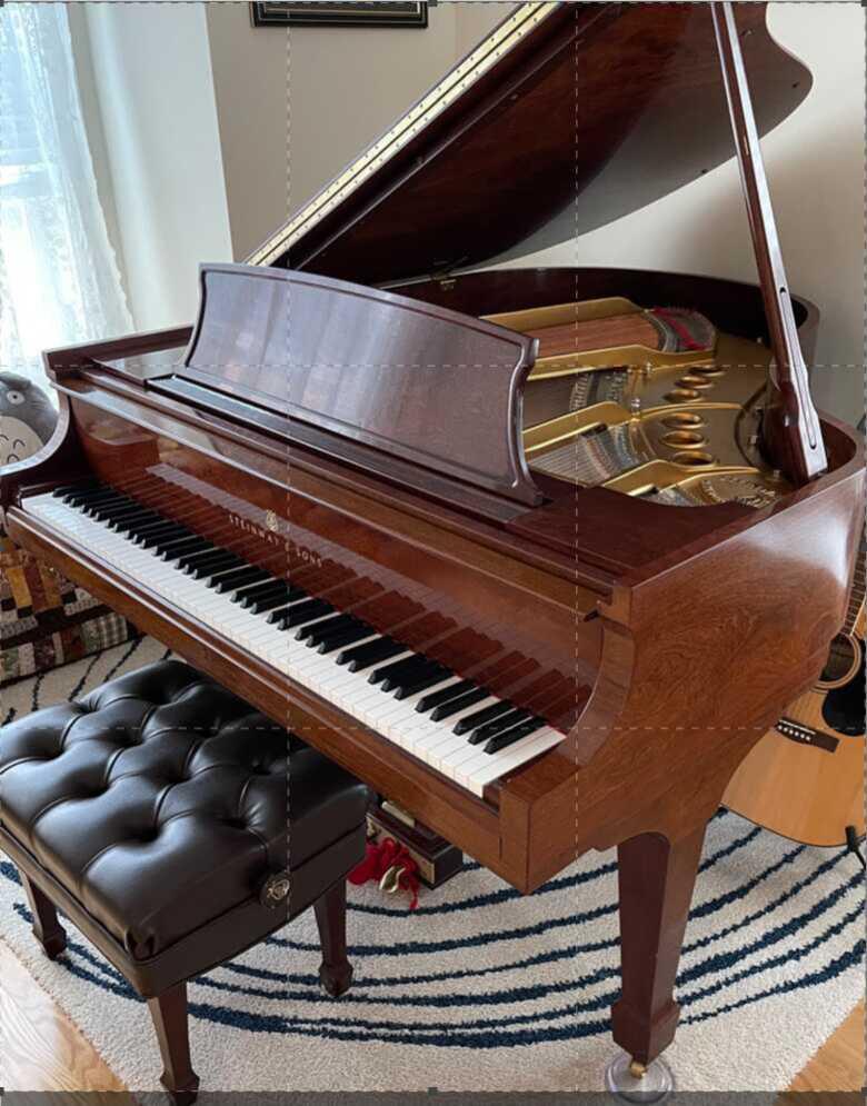 Steinway Grand Piano M 2009 sapele