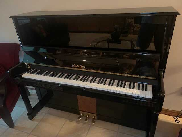 """Palatino 50"""" Upright in Excellent Condition"""
