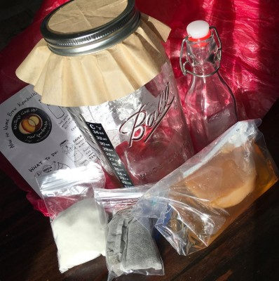 Kulture Club Kombucha Starter Kit On Martha's Vineyard